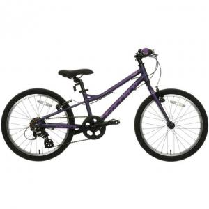 Carrera Saruna Junior Hybrid Bike - 20